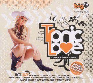 Big Fm-Tronic Love Vol.3, Diverse Interpreten