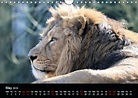 Big Game in Britain (Wall Calendar 2019 DIN A4 Landscape) - Produktdetailbild 5