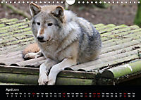 Big Game in Britain (Wall Calendar 2019 DIN A4 Landscape) - Produktdetailbild 4