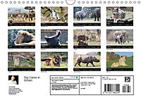 Big Game in Britain (Wall Calendar 2019 DIN A4 Landscape) - Produktdetailbild 13