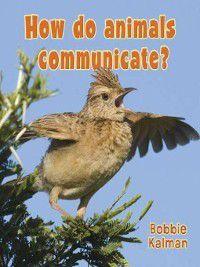 Big Science Ideas: How do animals communicate?, Bobbie Kalman