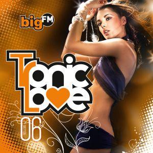 bigFM Tronic Love Vol. 6, Diverse Interpreten