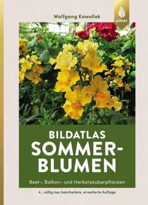 Bildatlas Sommerblumen - Wolfgang Kawollek |