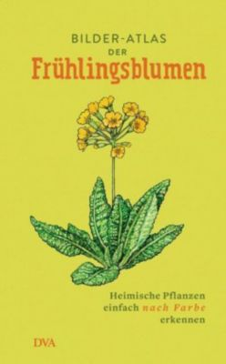 Bilder-Atlas der Frühlingsblumen -  pdf epub