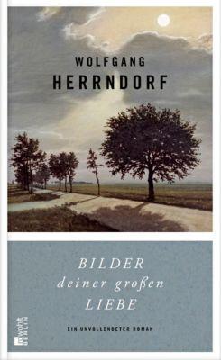 Bilder deiner großen Liebe - Wolfgang Herrndorf |