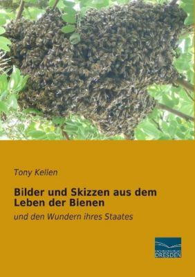 Bilder und Skizzen aus dem Leben der Bienen - Tony Kellen  