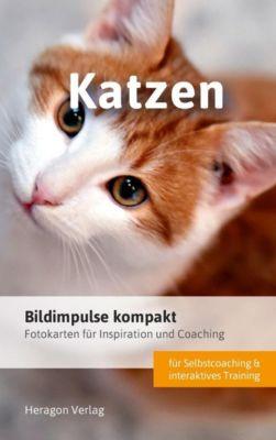Bildimpulse kompakt: Katzen - Bodo Pack |
