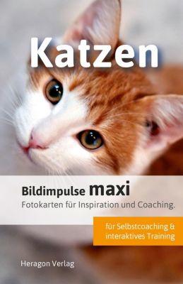 Bildimpulse maxi: Katzen - Bodo Pack |