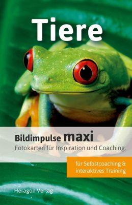 Bildimpulse maxi: Tiere - Bodo Pack |