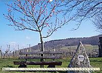 Bildschönes Heppenheim Mittelpunkt der Hessischen Bergstraße (Wandkalender 2019 DIN A2 quer) - Produktdetailbild 3