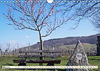 Bildschönes Heppenheim Mittelpunkt der Hessischen Bergstraße (Wandkalender 2019 DIN A4 quer) - Produktdetailbild 3