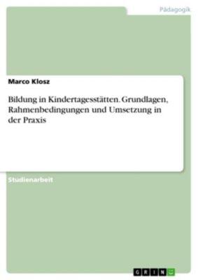 Bildung in Kindertagesstätten. Grundlagen, Rahmenbedingungen und Umsetzung in der Praxis, Marco Klosz
