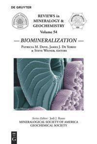 Biomineralization