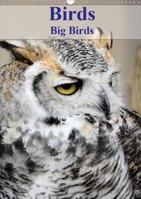 Birds Big Birds (Wall Calendar 2019 DIN A3 Portrait), Jon Grainge