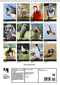 Birds Big Birds (Wall Calendar 2019 DIN A3 Portrait) - Produktdetailbild 13