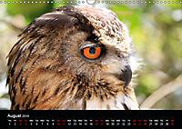 Birds found in Malta (Wall Calendar 2019 DIN A3 Landscape) - Produktdetailbild 8