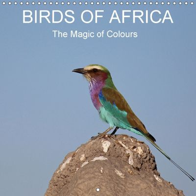 Birds of Africa (Wall Calendar 2018 300 × 300 mm Square), Michael Herzog