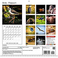 Birds - Potpourri (Wall Calendar 2019 300 × 300 mm Square) - Produktdetailbild 13
