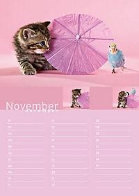 Birthday Calendar - Produktdetailbild 11