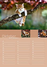 Birthday Calendar - Produktdetailbild 10