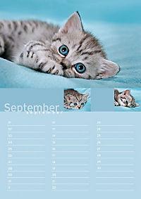 Birthday Calendar - Produktdetailbild 9