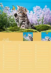 Birthday Calendar - Produktdetailbild 7
