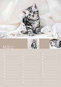 Birthday Calendar - Produktdetailbild 3