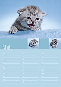 Birthday Calendar - Produktdetailbild 5