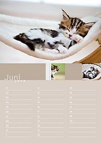Birthday Calendar - Produktdetailbild 6