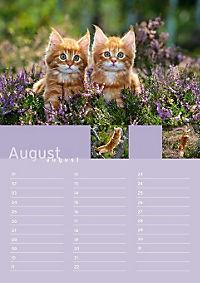 Birthday Calendar - Produktdetailbild 8