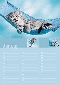 Birthday Calendar - Produktdetailbild 1