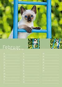 Birthday Calendar - Produktdetailbild 2