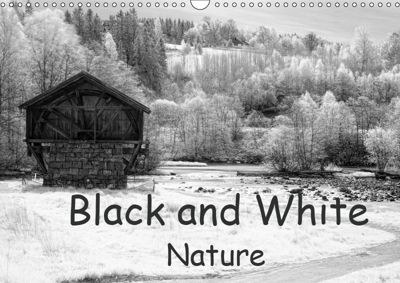 Black and White Nature (Wall Calendar 2019 DIN A3 Landscape), Dirk Rosin