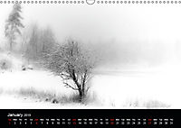 Black and White Nature (Wall Calendar 2019 DIN A3 Landscape) - Produktdetailbild 1