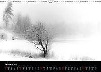 Black and White Nature (Wall Calendar 2019 DIN A3 Landscape) - Produktdetailbild 1