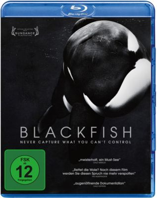 Blackfish, Kim Ashdown, Ken Balcomb