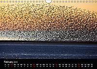 Blackpool and the Fylde Coast (Wall Calendar 2019 DIN A4 Landscape) - Produktdetailbild 2