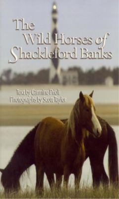 Blair: Wild Horses of Shackleford Banks, Scott Taylor, Carmine Prioli