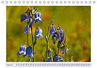 Blaues Wunder der Natur (Tischkalender 2019 DIN A5 quer) - Produktdetailbild 8