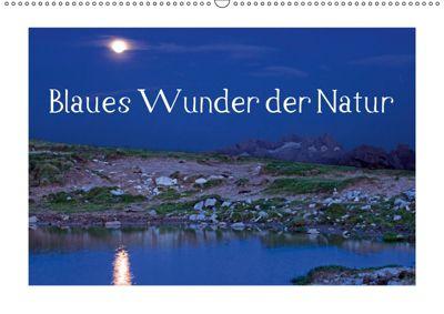Blaues Wunder der Natur (Wandkalender 2019 DIN A2 quer), Christa Kramer