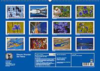 Blaues Wunder der Natur (Wandkalender 2019 DIN A2 quer) - Produktdetailbild 13