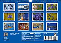 Blaues Wunder der Natur (Wandkalender 2019 DIN A4 quer) - Produktdetailbild 13