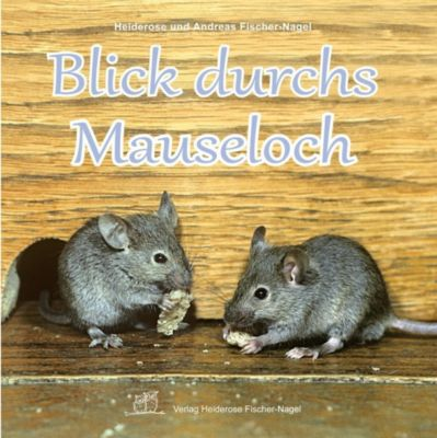Blick durchs Mauseloch, Andreas Fischer-Nagel, Heiderose Fischer-Nagel