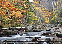 Blickpunkte der USA (Wandkalender 2019 DIN A4 quer) - Produktdetailbild 10
