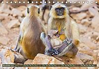 Blickpunkte in Nordindien (Tischkalender 2019 DIN A5 quer) - Produktdetailbild 11