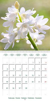 Blooms in White (Wall Calendar 2019 300 × 300 mm Square) - Produktdetailbild 2