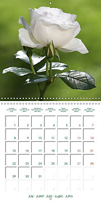 Blooms in White (Wall Calendar 2019 300 × 300 mm Square) - Produktdetailbild 7