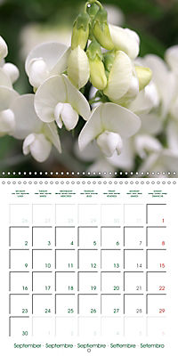 Blooms in White (Wall Calendar 2019 300 × 300 mm Square) - Produktdetailbild 9