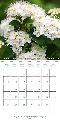Blooms in White (Wall Calendar 2019 300 × 300 mm Square) - Produktdetailbild 8