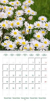 Blooms in White (Wall Calendar 2019 300 × 300 mm Square) - Produktdetailbild 11